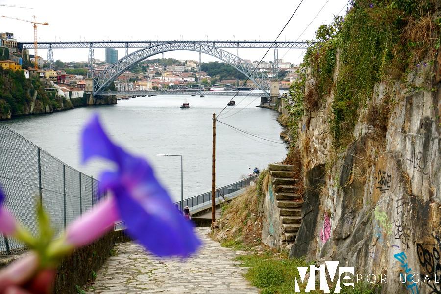 Puente Dom Luís I desde la calçada das Carquejeiras