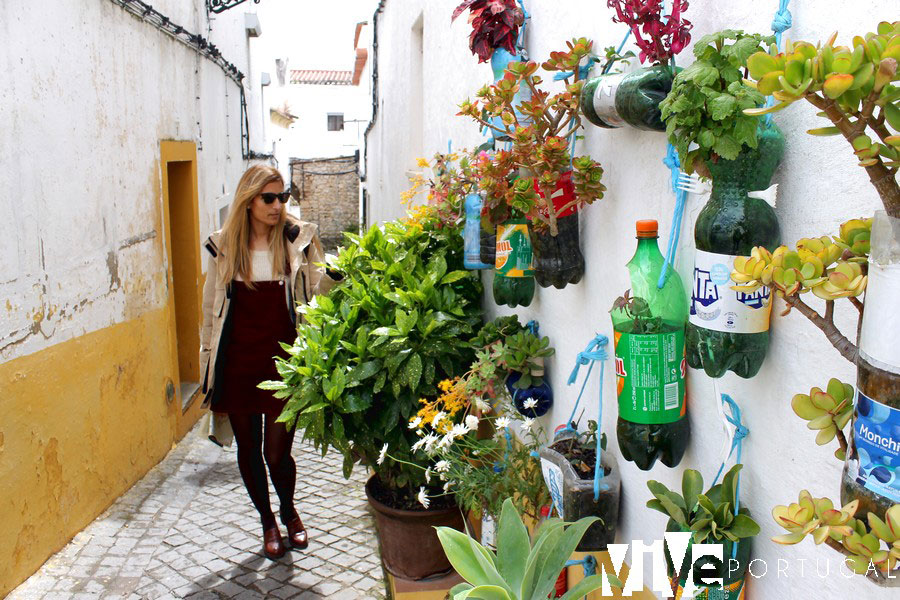 Flores y plantas en una calle de Elvas